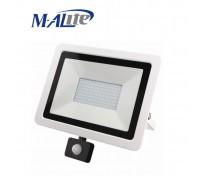 AF13 LED Floodlight with sensor